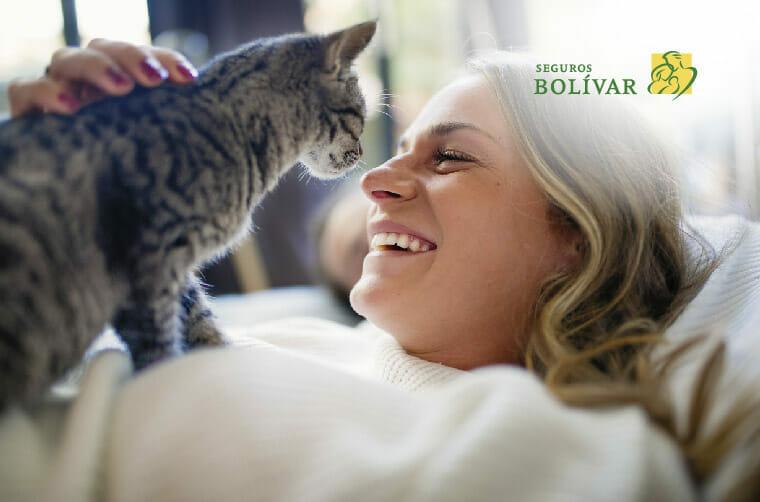 Día-internacional-del-gato